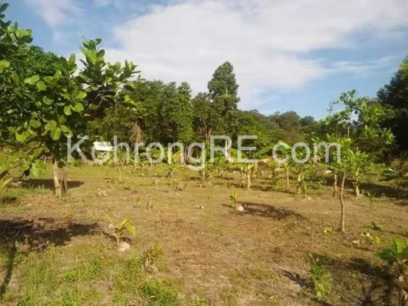 land for sale in Koh Rong near Royal beach long beach main road hard title hard card (3)