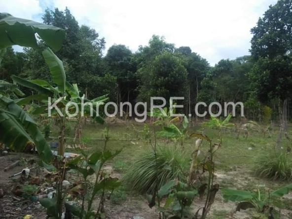 land for sale in Koh Rong near Royal beach long beach main road hard title hard card (5)