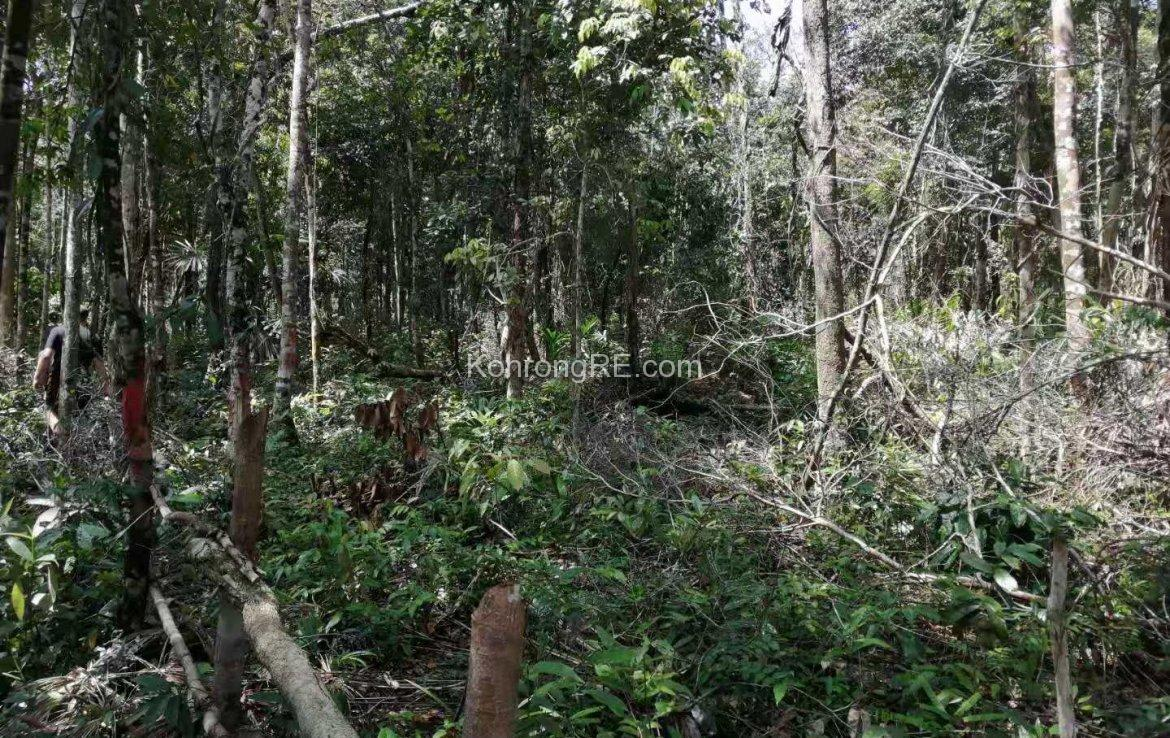 Land for Sale on Koh Rong island, Cambodia. Buy Koh Rong land plot. Property on Koh Rong