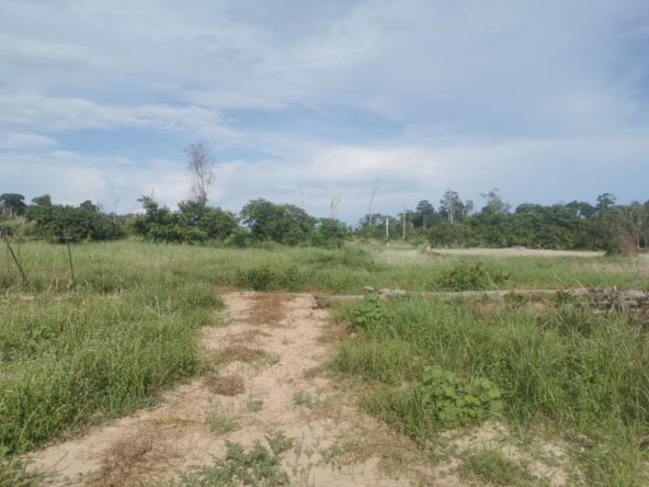 available land plots for sale in Koh Rong Cambodia (2)